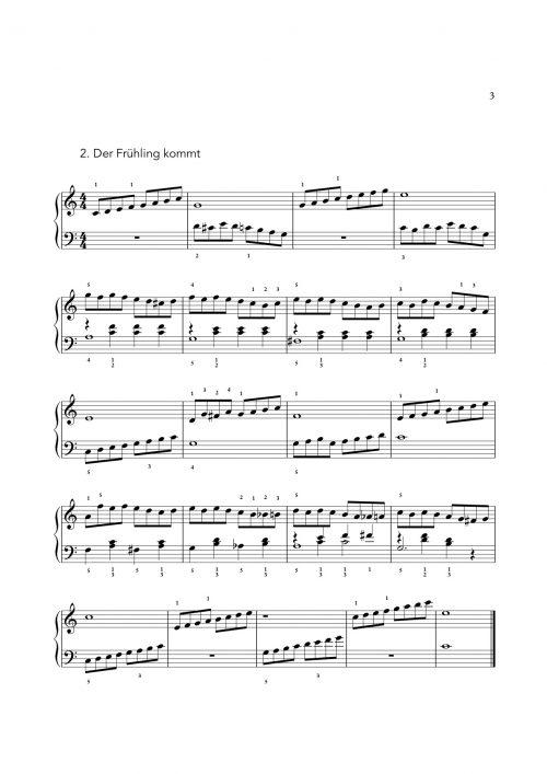 DMK-Band 2-Stück2
